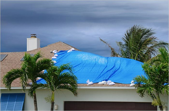 Elfyer - Florida, FL House - For Sale