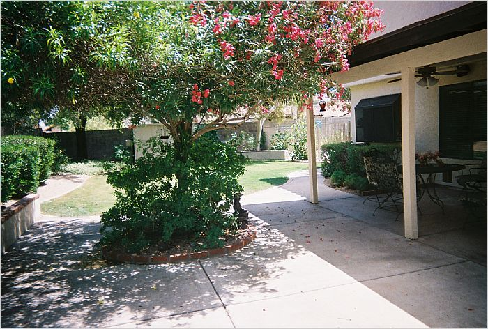 Elfyer - Tempe, AZ House - For Sale