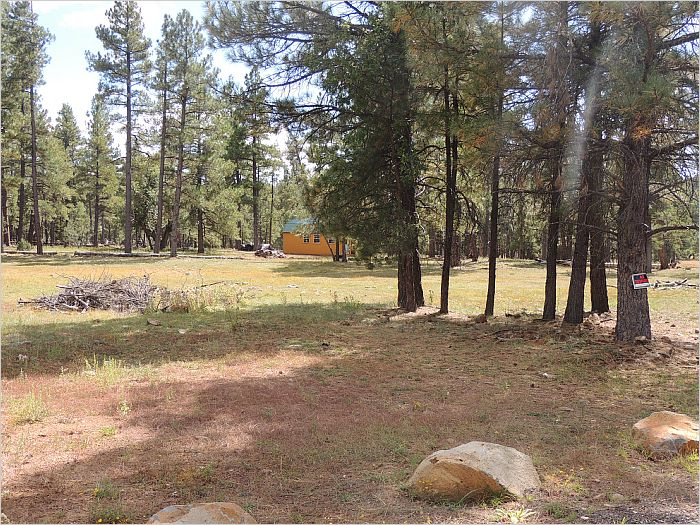 Elfyer - Munds Park, AZ House - For Sale